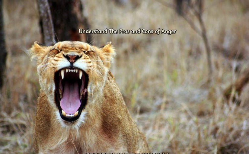 Anger : The Misunderstood Emotion