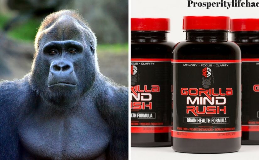 Know about the Gorilla Mind Rush Review